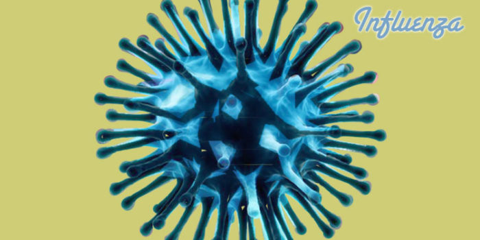 Influenza (Gripa)